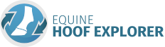 Equine Hoof Explorer - The new way to explore the Equine Hoof in 3D